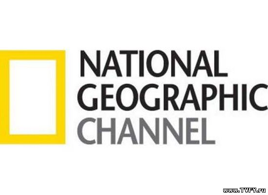 National Geographic онлайн бесплатно